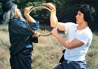 Snake Fist style