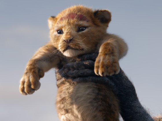 The cub who would be king
